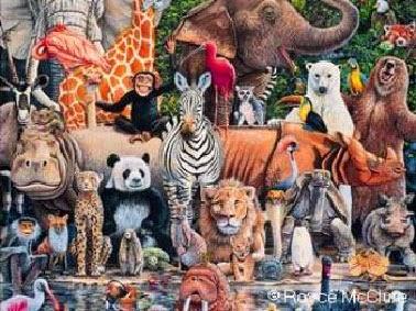 Declaración de los Derechos del Animal