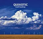 Matt Keating: Quixotic