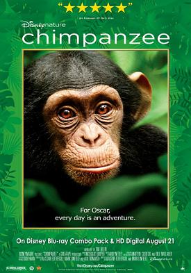 Filme Poster Chimpanzé DVDRip XviD & RMVB Legendado