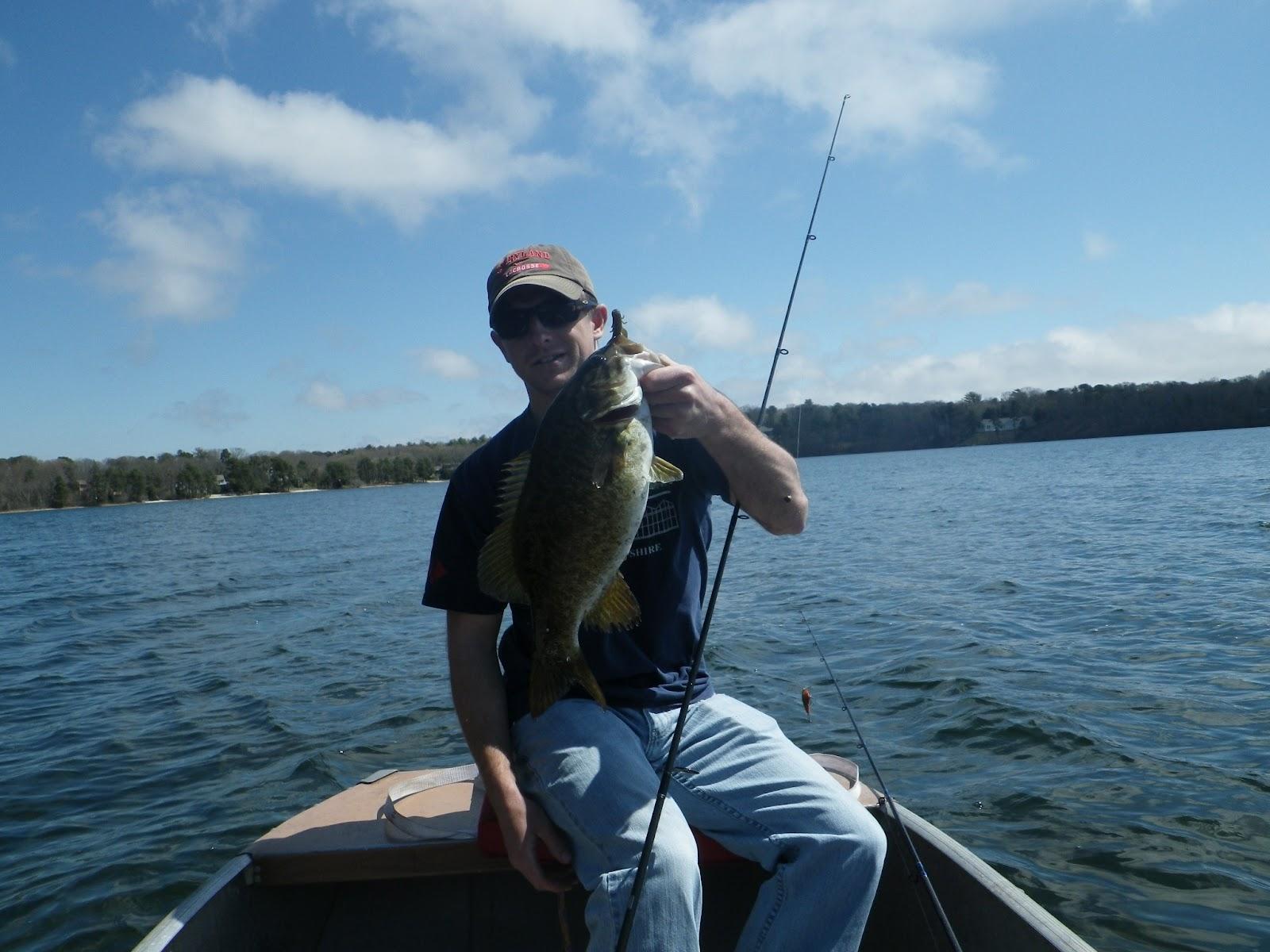 New england striper fishing pre spawn smallmouth bass fishing for Smallmouth bass fishing