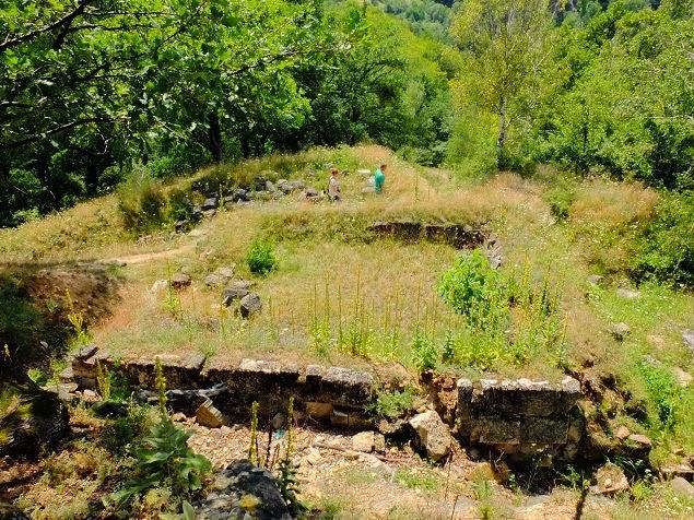 Cetatea Capalna