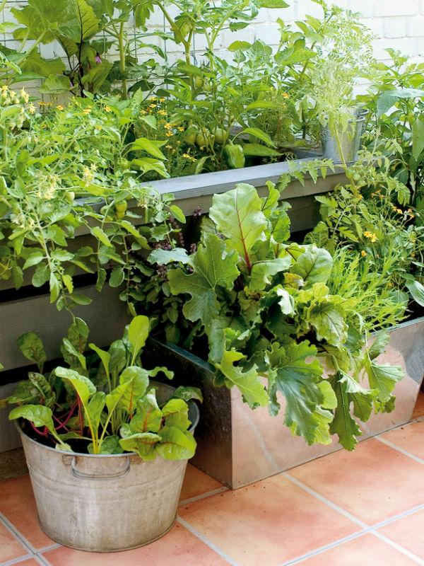 huerto en macetas de aluminio- kitchen-garden