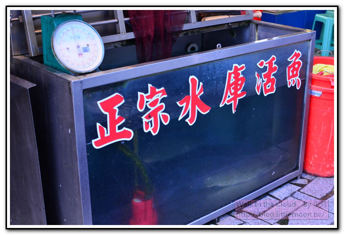 正宗水庫活魚