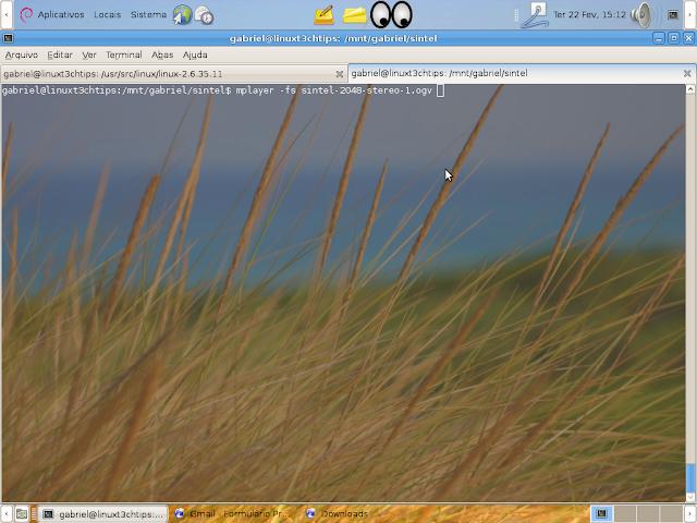 executando o Sintel em tela cheio com mplayer utilizando a opção -fs (full screen)
