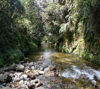 Fakta Menarik dari Kota Asahan-Sumatera Utara