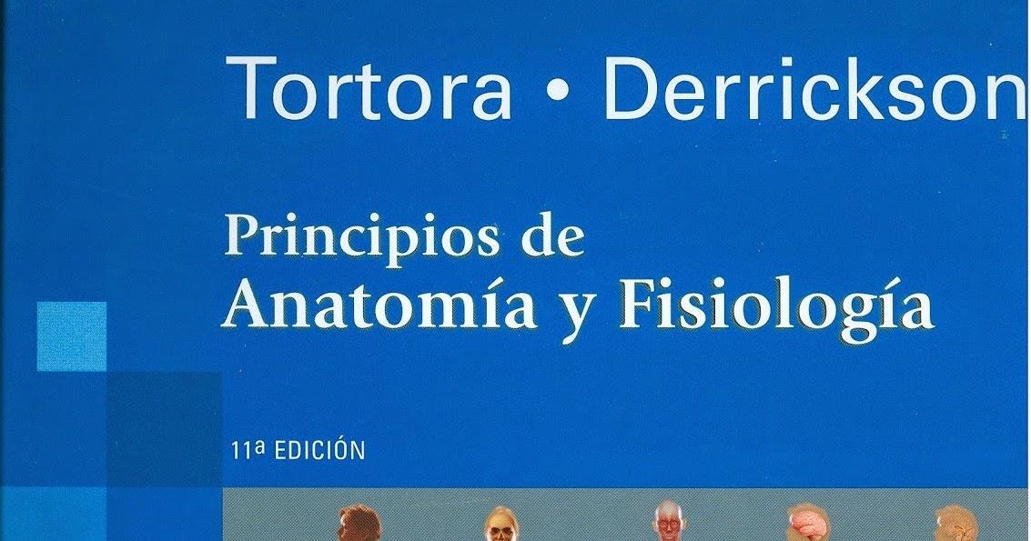 Perfecto Principio De La Anatomía Y La Fisiología 13ª Edición ...