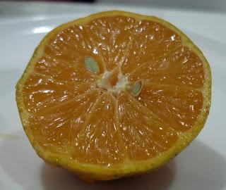 limão cravo aberto