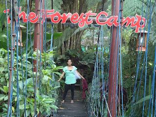 Forrest Camp