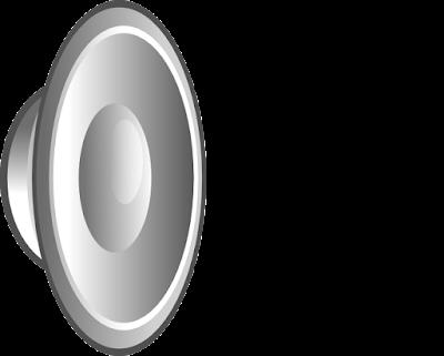 برنامج صدى الصوت