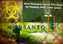 Monsanto's New Global Health Hazard