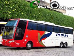 Busscar Jum Buss 380 2001