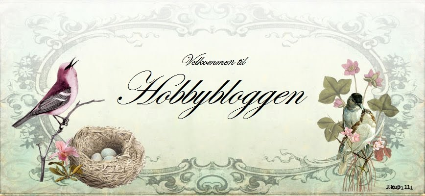 Hobbybloggen