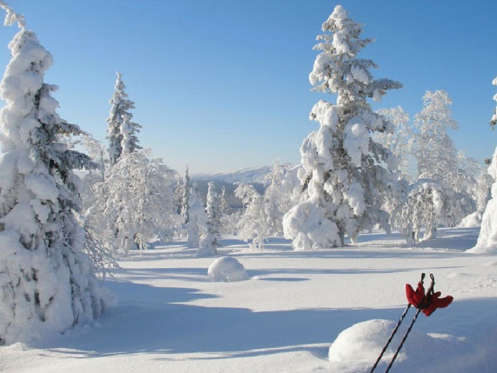 Lapland is the kind of place where you could really be at one with nature (as long as you packed enough warm clothes).