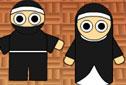 Agame Ninja or Nun