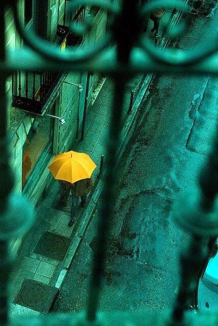 Lelaki dan Hujan
