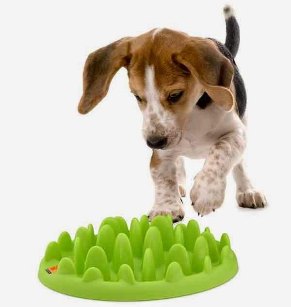 Family dog tu tienda canina comederos para perros for Comederos para perros