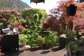 My garden ...