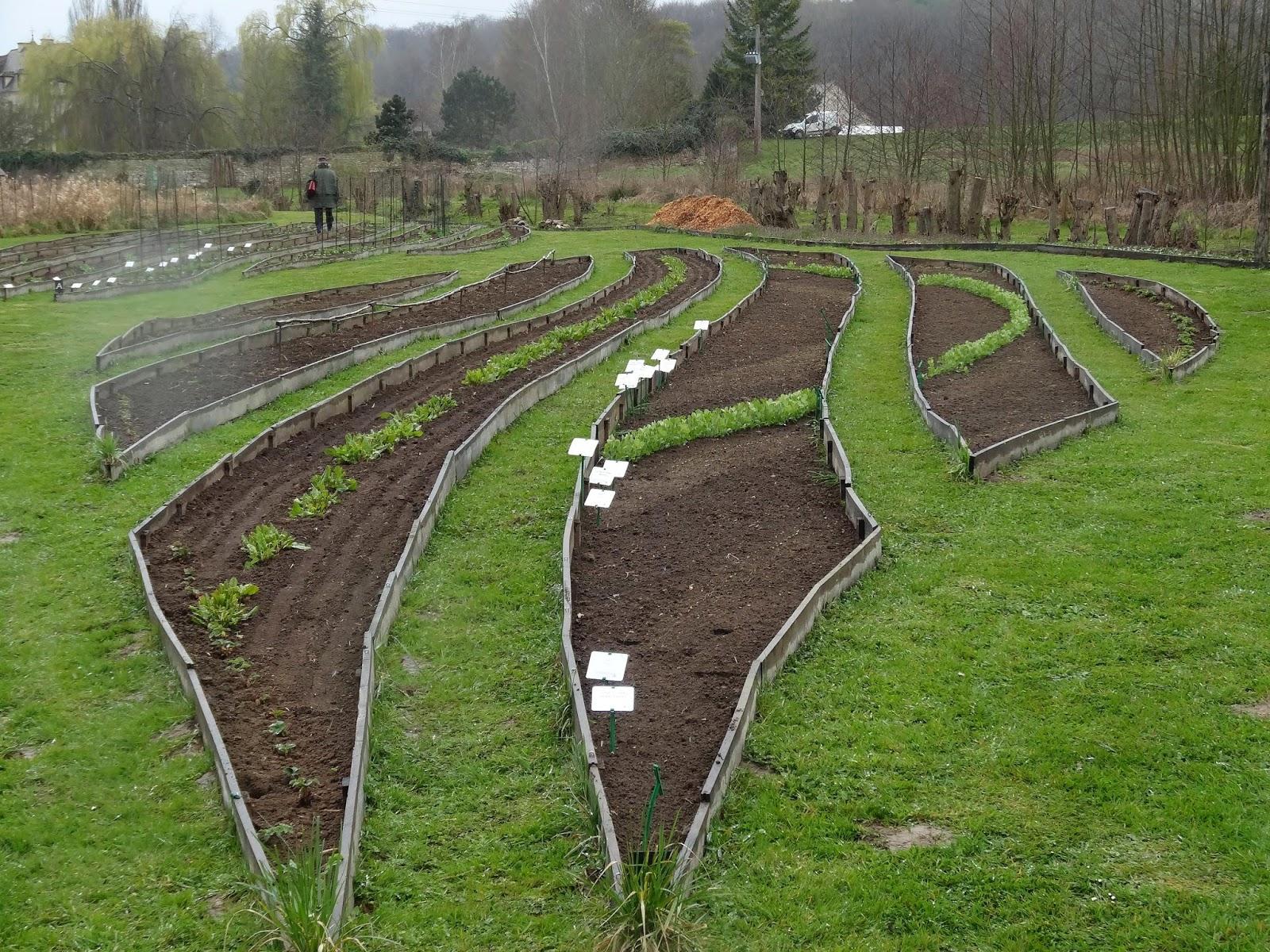 Le blog de parcs et jardins de l 39 oise mars 2014 - Comment cuire les petit pois du jardin ...