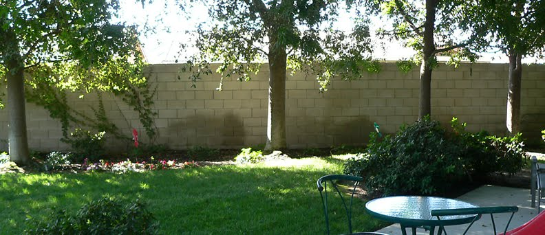Bright Wall, Visalia - Before picture