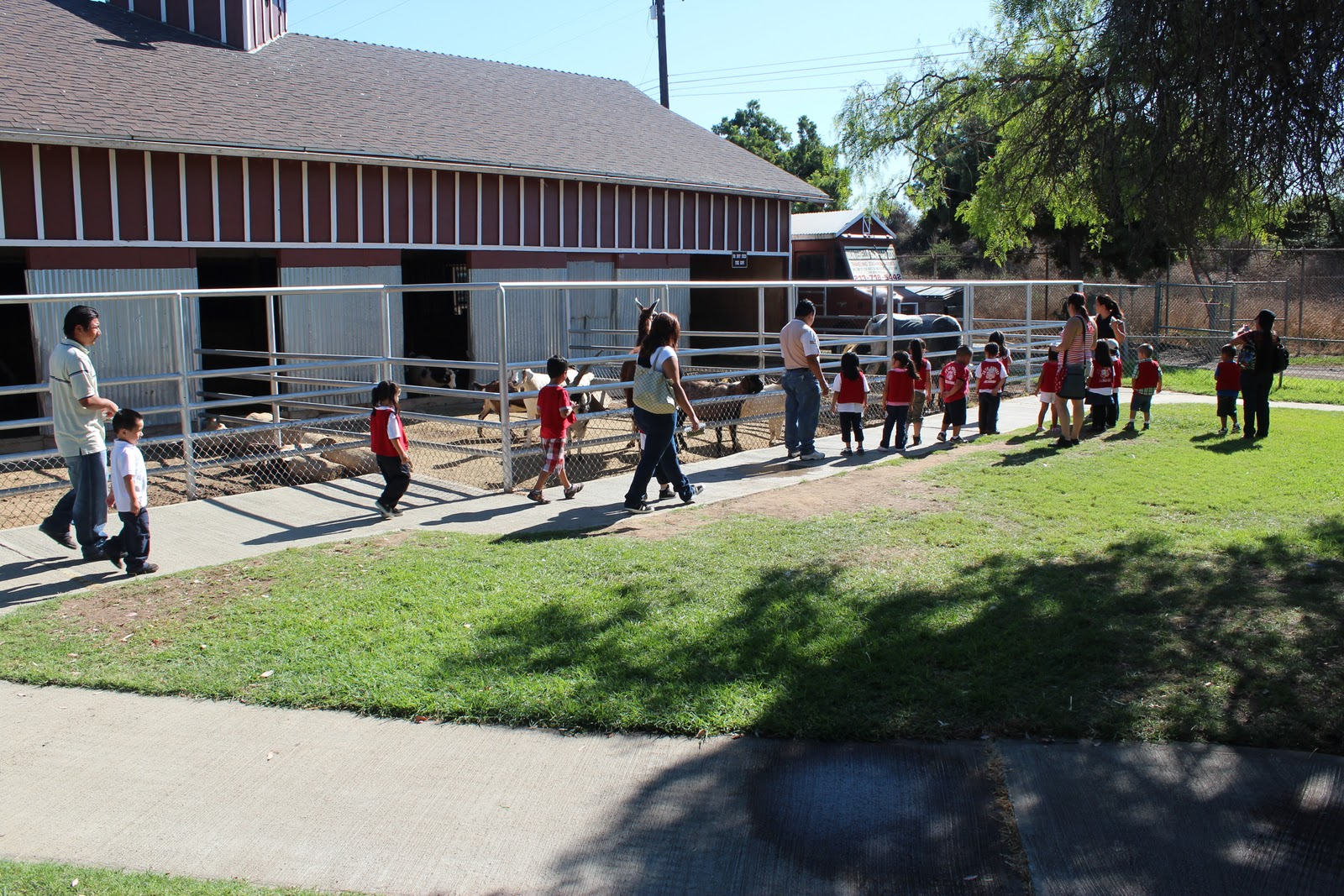Montebello Barnyard Zoo School Field Trips Petting Zoo Los