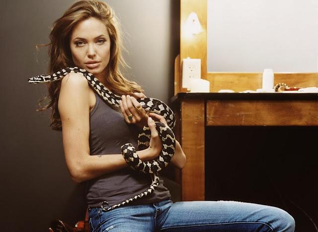 Angelina Jolie Wallpapers Free Download