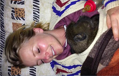 Carley Stenson caring for an orphaned monkey in Africa
