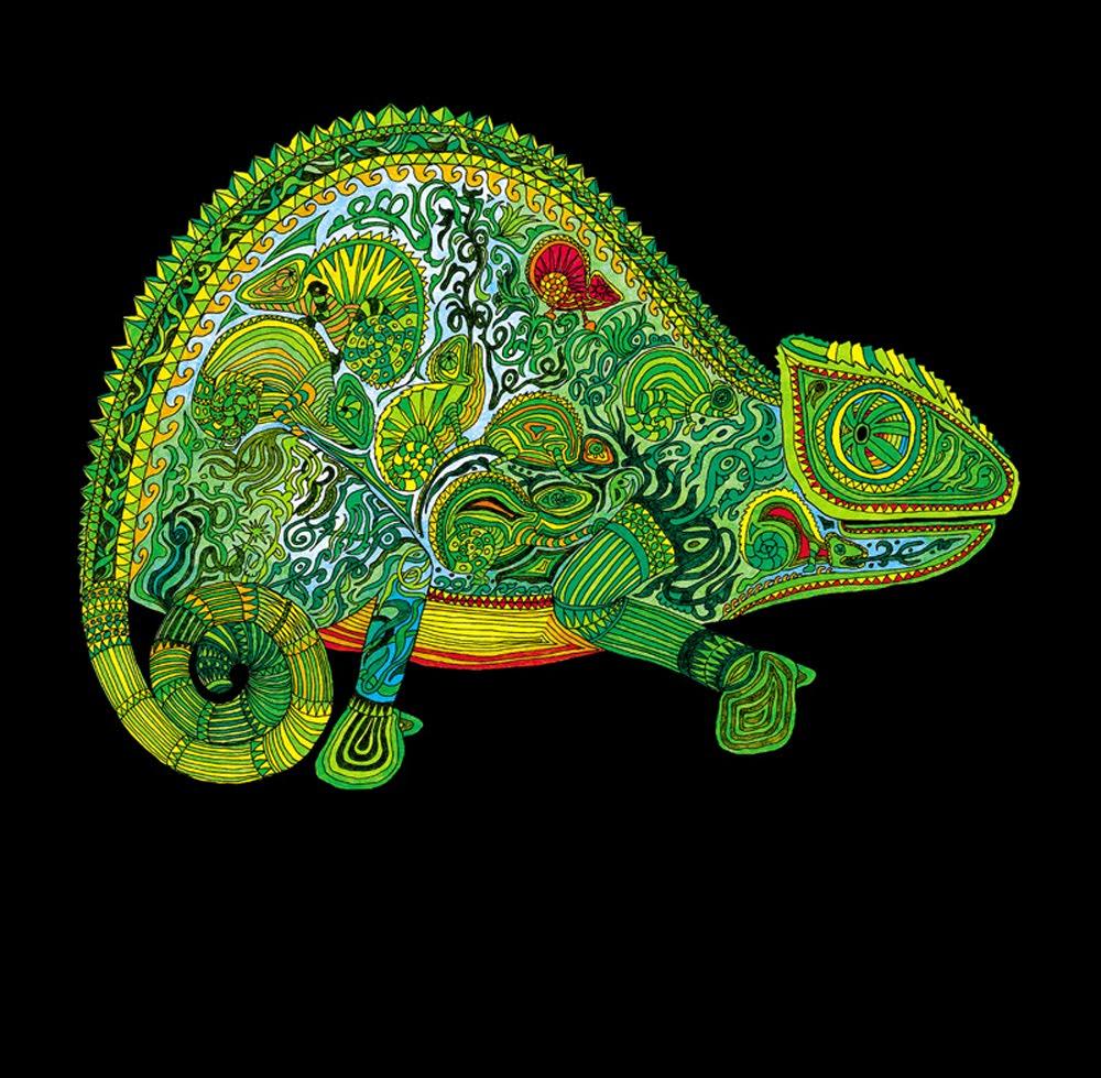 DIBUJOS DE ANIMALITOS: Animalitos psicodelicos formados por varios ...
