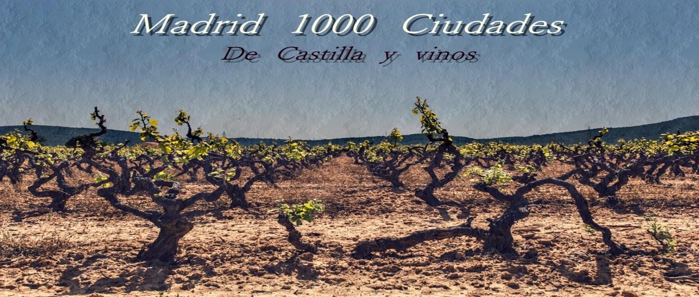 MADRID 1000 CIUDADES