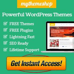 I migliori temi per Wordpress