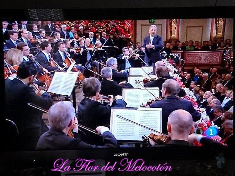 Concierto Año Nuevo 2015