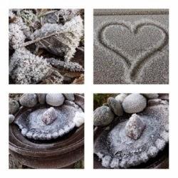 Frost i November