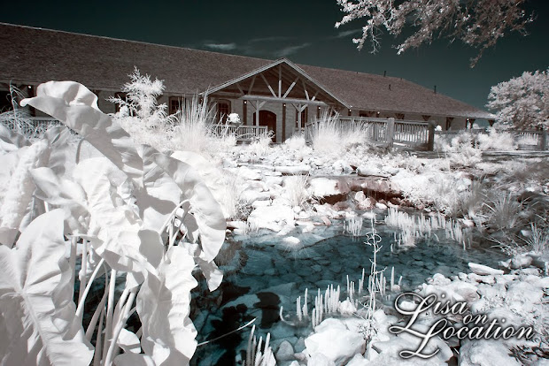 Boulder Springs, New Braunfels, wedding venues, wedding photography, Austin, San Antonio, San Marcos, infrared wedding photography