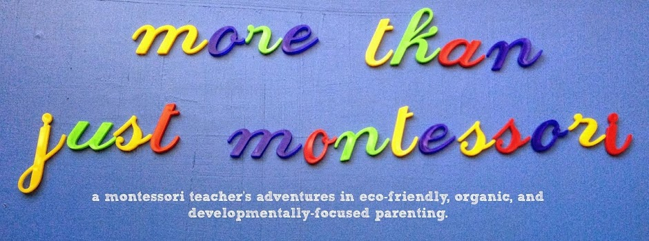 More Than Just Montessori