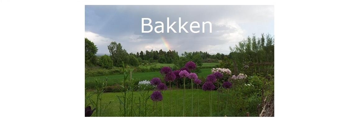 Hagen på Bakken