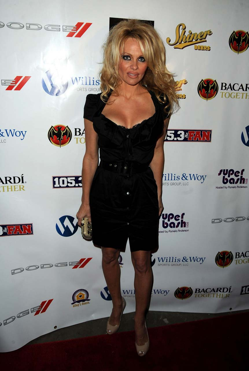 Suggest you Pamela anderson see through