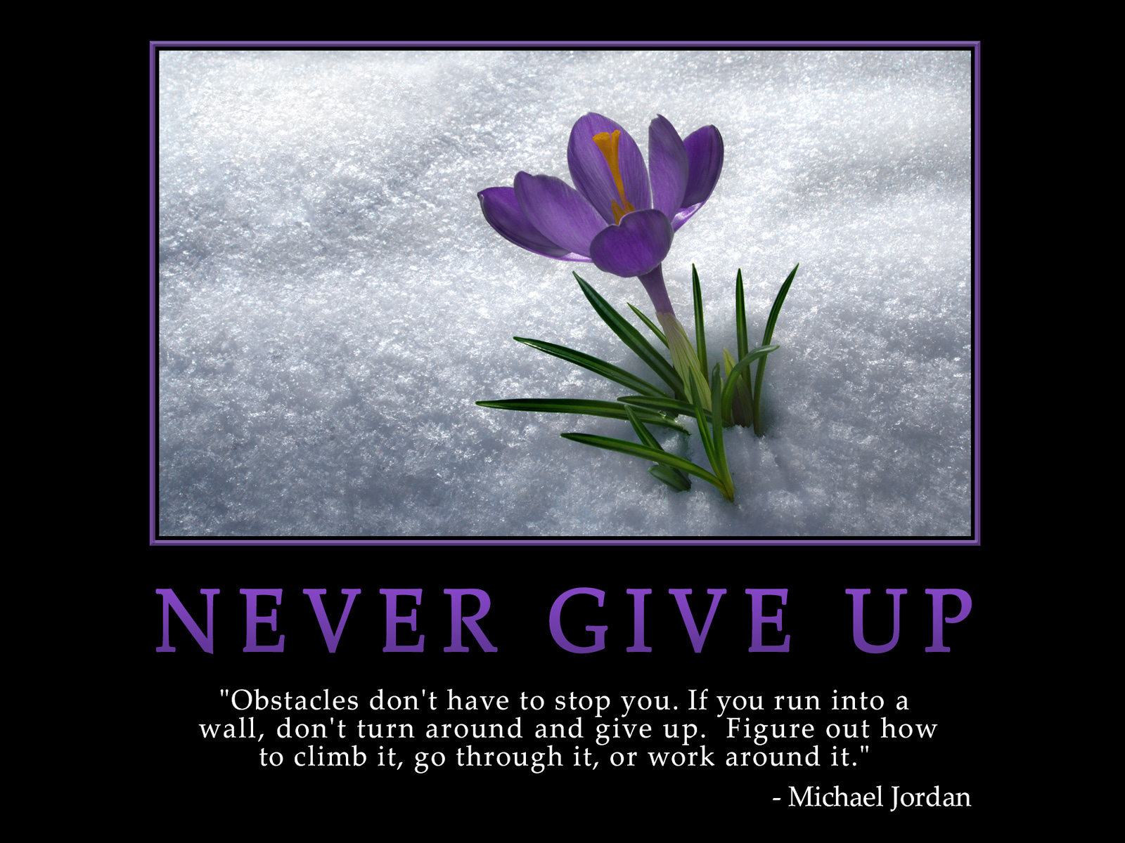 Poems About Never Giving up Hope Never Ever Give up
