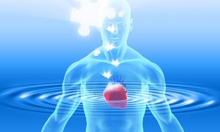 Сознание Сердца - новое сознание нашего времени