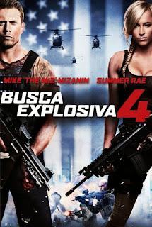 Busca Explosiva 4 - DVDRip Dual Áudio