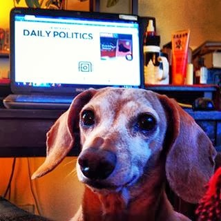Newshounds Prefer the Daily News