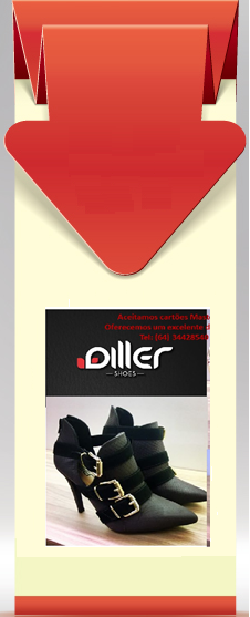 Diller Shoes