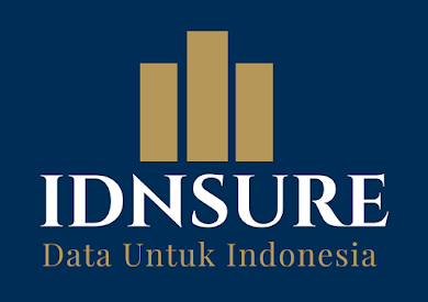 IDNSURE - Digital Marketing Consultant