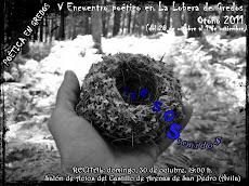"""Encuentro Otoño 2011-Lema: """"VERSOSTENIDOS""""- UN GUIÑO A LA POESÍA VISUAL"""
