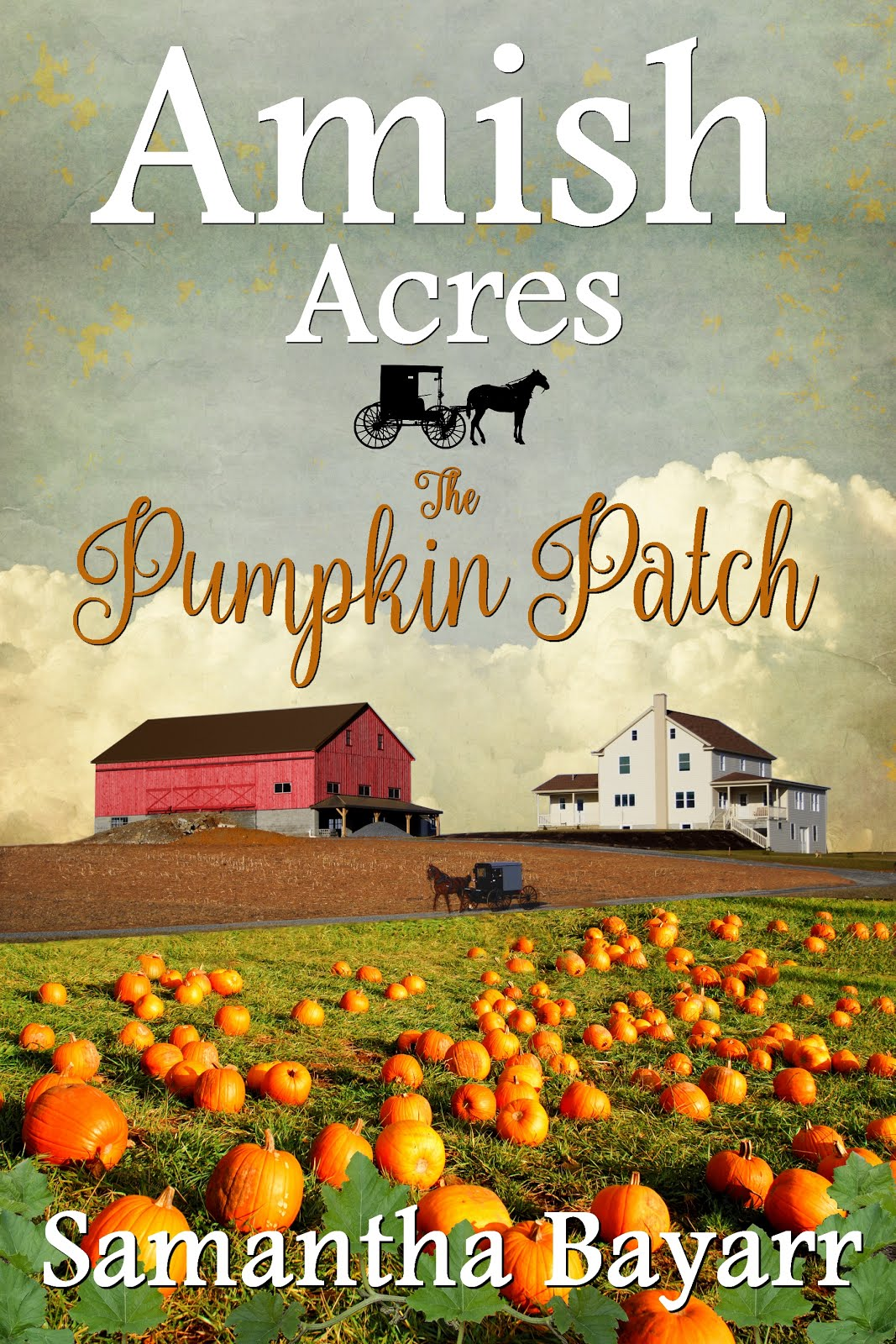 Amish Acres: The Pumpkin Patch