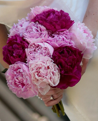 brides bouquet Wedding Inspiration: Peony Bouquets