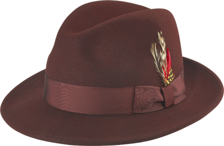 Classic wide brim Fedora hat