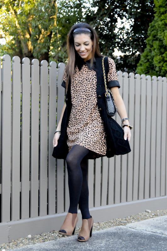 Lovin' Leopard