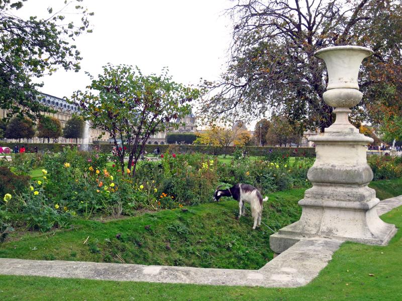 Paris get Tuilerierna