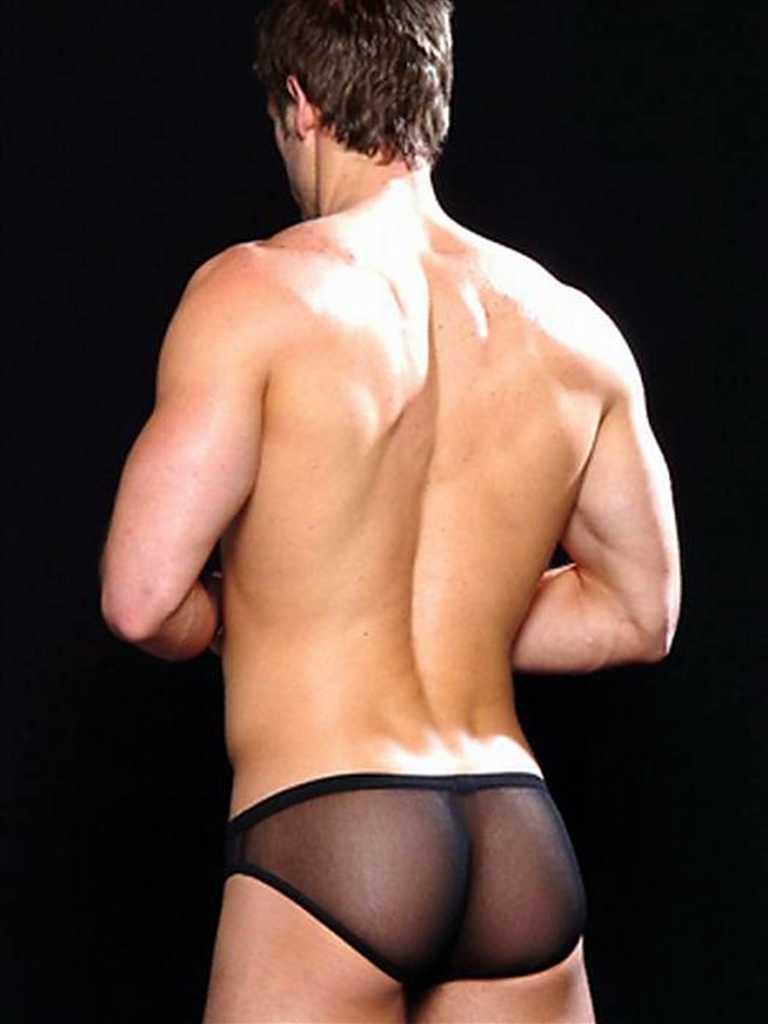 william levy erotic gallery
