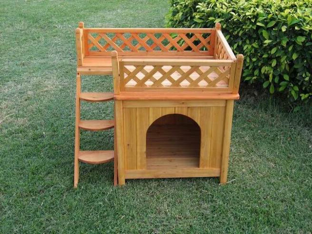 wooden cat houses outdoor