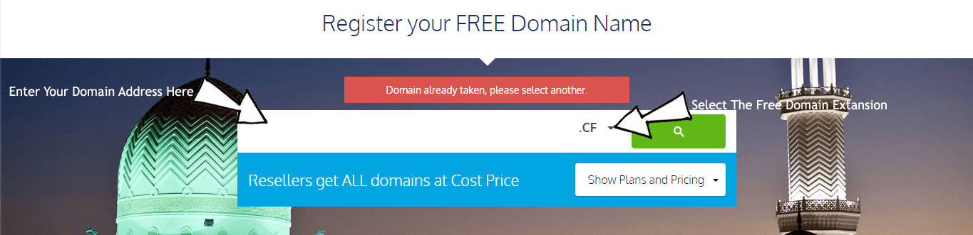 Searching For Free Domain